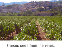 Carces, Provence, seen from the vineyards.